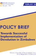 devolutionpolicybrief