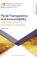 FiscalTransparencyPolicyBrief